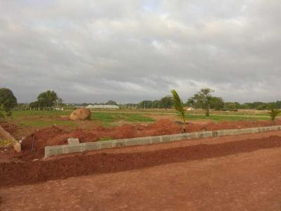 Gallery Cover Image of  Sq.ft Residential Plot for buy in Shamirpet for 1000000