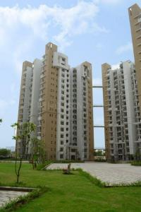 Gallery Cover Image of 990 Sq.ft 2 BHK Apartment for rent in Sector 143 for 12500