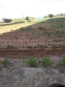 300 Sq.ft Residential Plot for Sale in Sector 83, Gurgaon