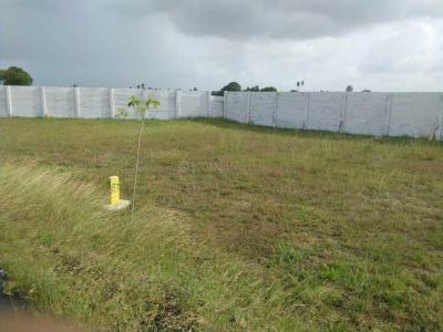 Gallery Cover Image of  Sq.ft Residential Plot for buy in Tambaram for 2700000