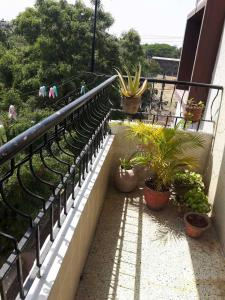 Gallery Cover Image of 630 Sq.ft 1 BHK Apartment for buy in Gita, Modi Colony for 6200000