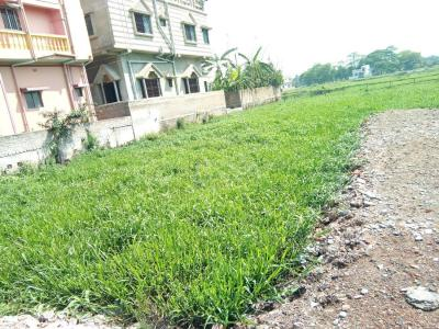 Gallery Cover Image of  Sq.ft Residential Plot for buy in Paschim Barisha for 1400000