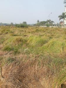 3240 Sq.ft Residential Plot for Sale in New Town, Kolkata