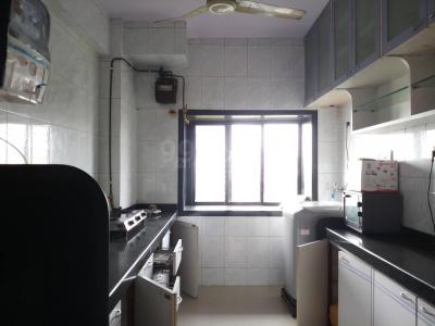 Kitchen Image of Looking For Flatmate in Powai