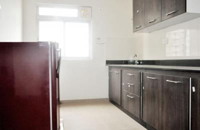 Kitchen Image of PG 4642036 Electronic City in Electronic City