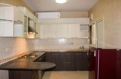 Kitchen Image of PG 4643811 Bellandur in Bellandur