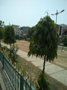 Gallery Cover Image of  Sq.ft Residential Plot for buy in Sector 49 for 5200000