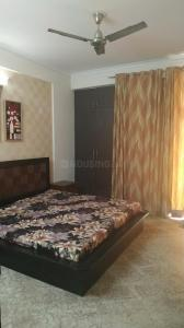 Gallery Cover Image of 1200 Sq.ft 2 BHK Apartment for rent in Amrapali Village, Kala Patthar for 18500