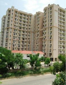 Gallery Cover Image of 1185 Sq.ft 2 BHK Apartment for rent in Sector 31 for 14000