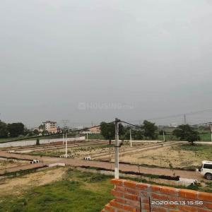 Plot View