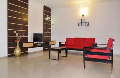 Living Room Image of PG 4643319 Bellandur in Bellandur