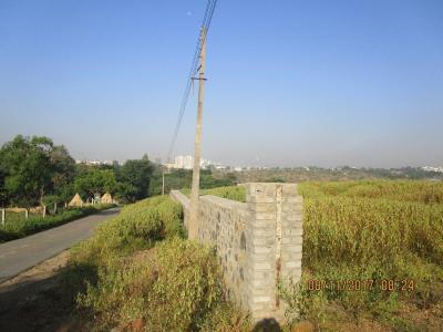 Gallery Cover Image of  Sq.ft Residential Plot for buy in Wagholi for 42500000
