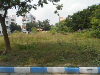 Gallery Cover Image of  Sq.ft Residential Plot for buy in New Town for 9200000