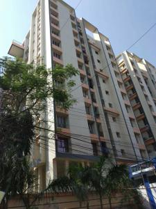 Gallery Cover Image of 1320 Sq.ft 3 BHK Apartment for rent in Kasba for 35000