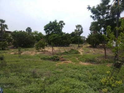 Gallery Cover Image of 20000 Sq.ft Residential Plot for buy in Muttukadu for 80000000