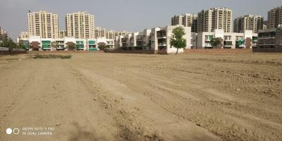 Gallery Cover Image of 900 Sq.ft Residential Plot for buy in Palla Village for 1800000