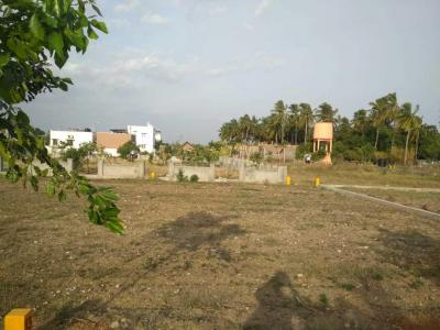 Gallery Cover Image of  Sq.ft Residential Plot for buy in Saravanampatty for 1115000