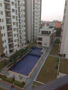 Gallery Cover Image of 2100 Sq.ft 4 BHK Apartment for rent in Umang Winter Hills, Sewak Park for 35000