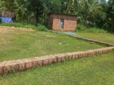Gallery Cover Image of  Sq.ft Residential Plot for buy in Shahpur for 8000000