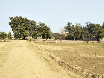 125 Sq.ft Residential Plot for Sale in Sector-36A, Rohtak