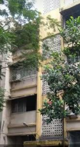 Gallery Cover Image of 650 Sq.ft 2 BHK Apartment for rent in Andheri East for 33000
