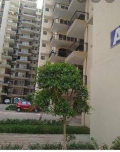 Gallery Cover Image of 350 Sq.ft 1 BHK Apartment for buy in Amolik Heights, Sector 88 for 1800000