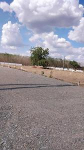 Gallery Cover Image of  Sq.ft Residential Plot for buy in Ramavarapadu for 1200000