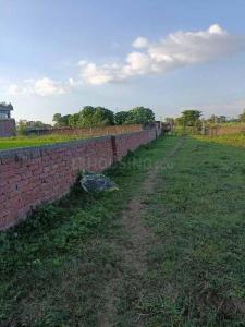 1361 Sq.ft Residential Plot for Sale in Mustafapur, Patna