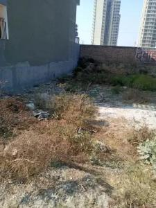 60 Sq.ft Residential Plot for Sale in Sector 10A, Gurgaon