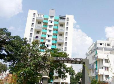 Gallery Cover Image of 1000 Sq.ft 2 BHK Apartment for rent in Pragati Royal Orchid, Ambegaon Budruk for 14900