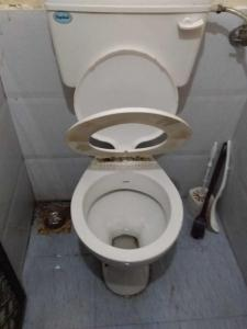 Common Bathroom Image of PG 5157320 Vasai West in Vasai West