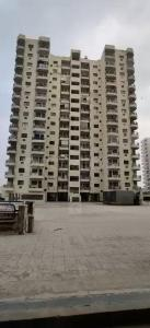 Gallery Cover Image of 2035 Sq.ft 4 BHK Apartment for rent in Ardee Palm Grove Heights, Sector 52 for 34000