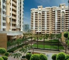 Gallery Cover Image of 2450 Sq.ft 3 BHK Apartment for buy in Vipul Belmonte, Sector 53 for 30000000