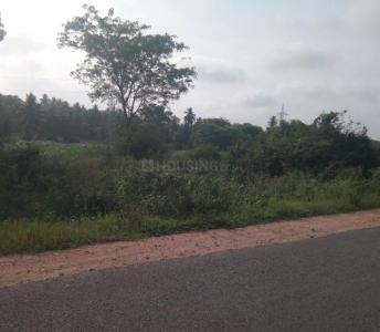 600 Sq.ft Residential Plot for Sale in Azad Nagar, Bangalore