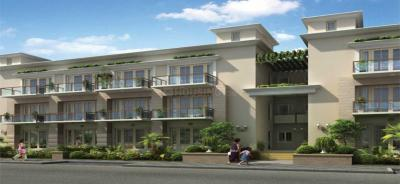 Gallery Cover Image of 2512 Sq.ft 3 BHK Independent Floor for rent in BPTP Astaire Garden, Sector 70A for 24500