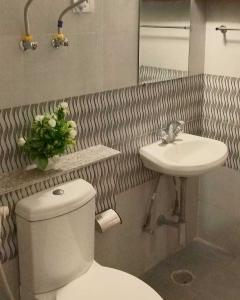 Common Bathroom Image of Shyam Vandana PG in Sector 26