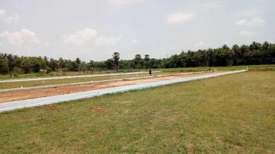 1458 Sq.ft Residential Plot for Sale in Bommuru, Rajahmundry
