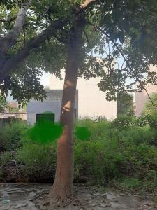 2151 Sq.ft Residential Plot for Sale in Govindpuram, Ghaziabad