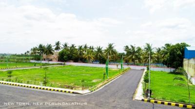 1500 Sq.ft Residential Plot for Sale in Kolapakkam - Vandalur, Chennai
