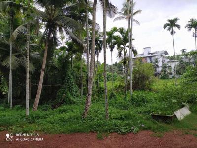 6534 Sq.ft Residential Plot for Sale in Govindapur, Kozhikode