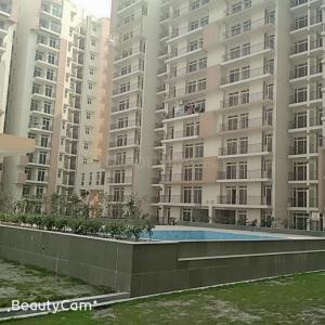 Gallery Cover Image of 1004 Sq.ft 2 BHK Apartment for rent in Sector 77 for 8500