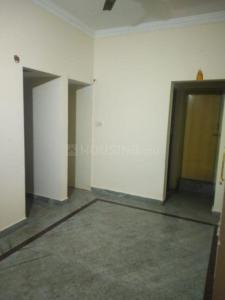 Gallery Cover Image of 950 Sq.ft 1 BHK Apartment for rent in Electronic City for 9000