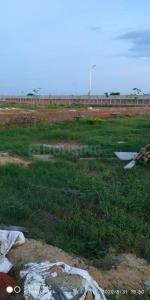 1224 Sq.ft Residential Plot for Sale in sector 98, Faridabad