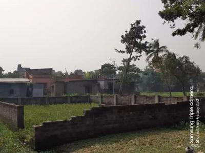 Gallery Cover Image of  Sq.ft Residential Plot for buy in Kalagachhia for 2300000