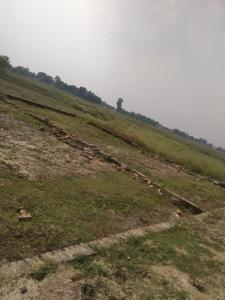 1000 Sq.ft Residential Plot for Sale in Rohania, Varanasi