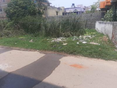 2421 Sq.ft Residential Plot for Sale in Thoraipakkam, Chennai