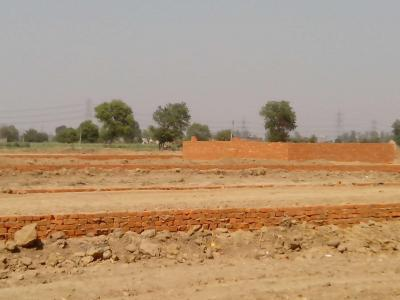 Gallery Cover Image of  Sq.ft Residential Plot for buy in Sector 150 for 180000
