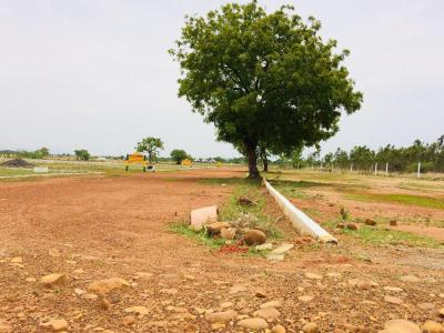 Gallery Cover Image of  Sq.ft Residential Plot for buy in Thirunindravur for 724500