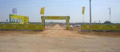 2016 Sq.ft Residential Plot for Sale in Penjerla, Hyderabad