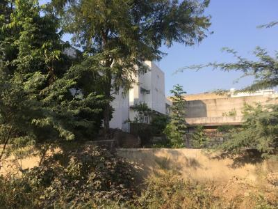 Gallery Cover Image of  Sq.ft Residential Plot for buy in Jagatpura for 12355000